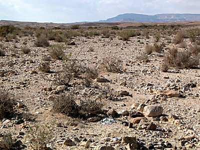 Desert_au_sud_de_Machtesh_Ramon4_tb_q010403.jpg