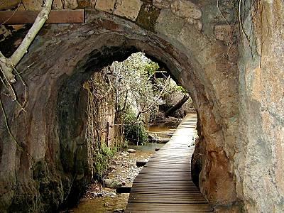 Arche Banias